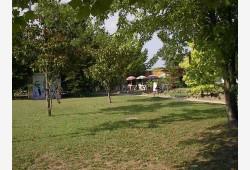 Parco ''Percorso Vita''